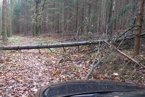 Pronásledované vozidlo zastavil až spadlý strom.
