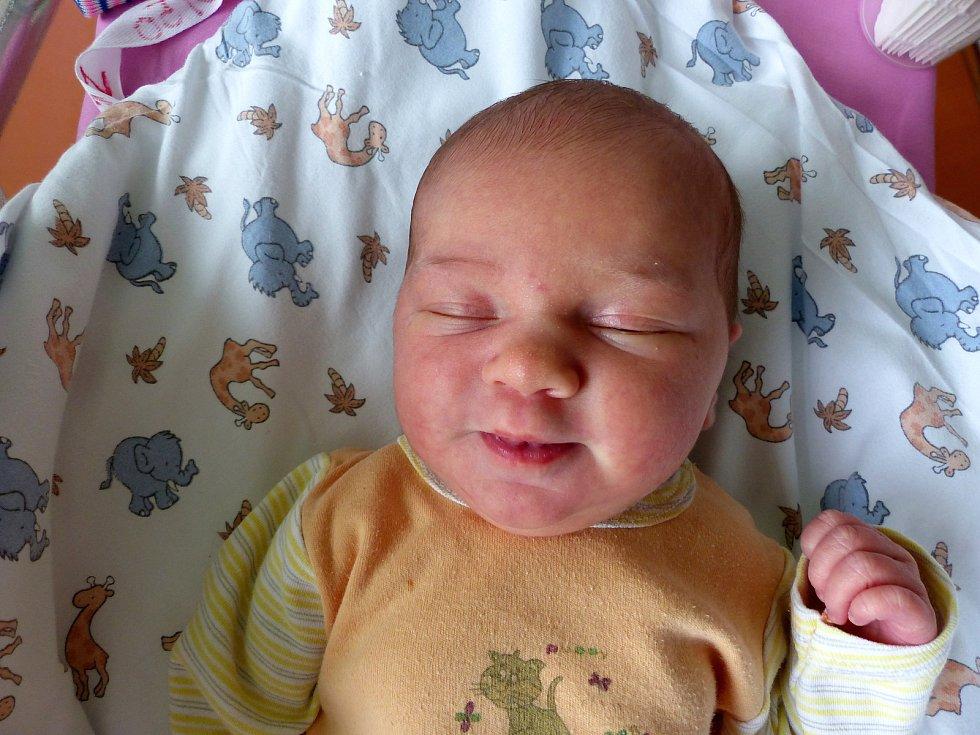 Diana Zbořilová se narodila 31. ledna 2019 s mírami 3440 g a 50 cm. Ve Velkém Oseku se z ní těší rodiče Jitka a Petr.