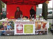 Den Země v kolínských Borkách