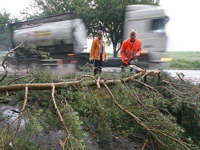 Desítky popadaných stromů museli lidé likvidovat po nočním řádění živlu.