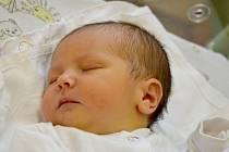 Tereza Ježková se narodila 23. září 2013 s mírami 50 centimetrů a 3150 gramů. Maminka Jana a tatínek Martin ji spolu s dvouletou Karolínkou budou vychovávat v Kolíně.