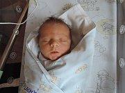 Tomáš Plachý se rozplakal 16. prosince 2016 smírami 50 centimetrů a 3010 gramů. Doma vKrakovanech ho přivítali maminka Kamila, tatínek Petr a tříletý bráška Kubík.