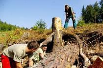 Po povodních museli vodáci odklízet hlavně stromy