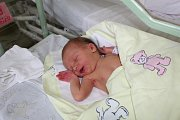 Prvním potomkem rodičů Terezy a Jana z Kolína je Nina Pekařová, která se narodila 1. srpna 2017 s mírami 50 centimetrů a 3020 gramů.