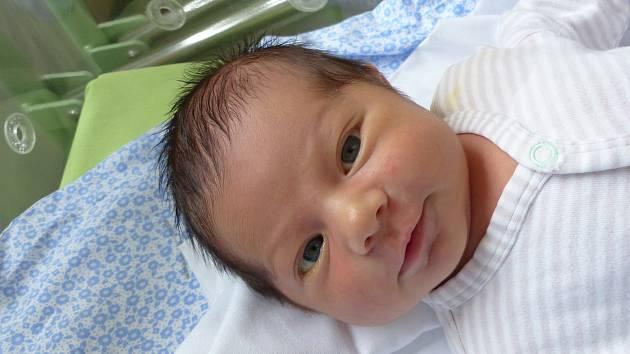 Lukáš Petrásek se narodil 19. února 2021 v kolínské porodnici,  vážil 3930 g a měřil 52 cm. V Kouřimi bude vyrůstat s maminkou Andreou a tatínkem Lukášem.