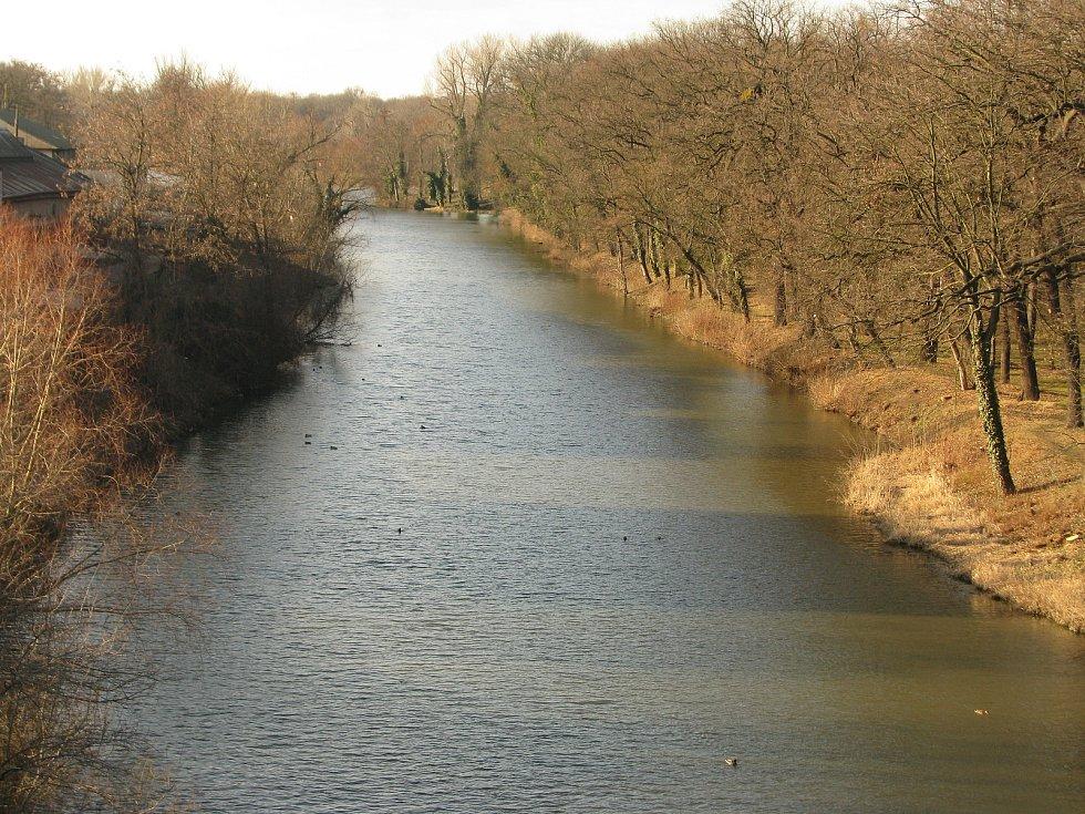 Řeka Labe v Kolíně.
