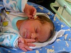 Prvním potomkem maminky Terezy a tatínka Jiřího z Bělušic je syn. Dominik Horák se rozhlédl 12. května 2015 s mírami 46 centimetrů a 2950 gramů.