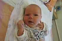 Eliška Čábelová se rozkřičela 25. ledna 2016 s výškou 52 centimetry a váhou 3740 gramů. Maminka Michala a tatínek Ondřej svou prvorozenou vychovávají ve Štítarech.