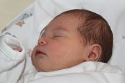 Liliana Tenorová je prvorozenou dcerou Lucie z Kolína. Na svět přišla 8. října 2017 s váhou 3080 gramů a výškou 48 centimetrů.