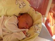 Johanka Píšová přišla na svět 15. února 2019 s mírami 3285 g a 50 cm. Ve Chmelišti se z ní těší sestřička Ivanka (3) a rodiče Jana a Michal.