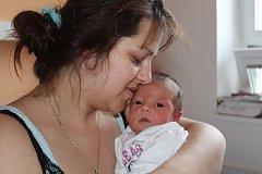 David Mišák se poprvé podíval na svět v kolínské porodnici 27.  listopadu 2017. Měřil 50 centimetrů a vážil 3860 gramů. Maminka Veronika a tatínek Petr si ho dovezli domů do Břežan II  k pětiletému bráškovi Denisovi.