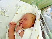Anna Pomichálková spatřila světlo světa 1. prosince 2015. Po narození se chlubila mírami 50 centimetrů a 3365 gramů. Maminka Petra, tatínek Petr a pětapůlletá sestřička Ema se z ní těší doma na Kaňku.