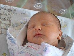 Petra Janošková se narodila 6. ledna 2014 mamince Denise a tatínkovi Petrovi z Milovic. Její první míry činily 45 centimetrů a 2645 gramů.