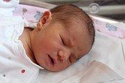 Darina Mykhaylo se narodila 25. září 2017 s váhou 3380 gramů a mírou 50 centimetrů. Doma ve Zruči nad Sázavou se na ni těšili rodiče Petro a Maria.