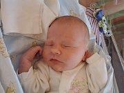 Petr Konývka se poprvé rozkřičel 25. prosince 2016. Po porodu vážil 3250 gramů a měřil 51 centimetrů. Maminka Michaela bude syna vychovávat v Týnci nad Labem.