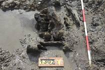 Pro laika by tento pohled patrně neznamenal nic zajímavého. Oko odborníka však začínalo tušit nález, o jakém se archeologům ani nesnilo – neolitickou studnu, jichž se našlo jen pár na celém kontinentu.