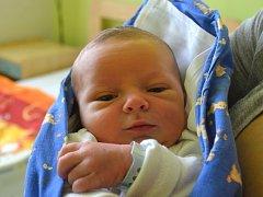 Prvním potomkem maminky Ilony a tatínka Ondřeje zRadimi je syn. Vojtěch Holub se narodil 21. září 2014 svýškou 52 centimetry a váhou 3600 gramů.