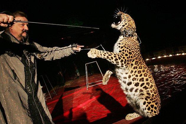 Cirkus JOO - JO v Kolíně