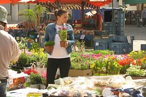 Trh v jarním hávu na Karlově náměstí v Kolíně.
