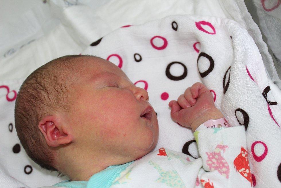 Adéla Dvořáková přišla na svět 16. května 2017 s váhou 3200 gramů a výškou 50 centimetrů. V rodném Kolíně se na ni těšil tatínek Aleš, maminka Jana a tříletá sestřička Jolanka.