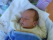 David Sedláček se narodil 11.11.2018, vážil 4385 g a měřil 55 cm. V Kolíně ho přivítá bráška Daniel (2.5) a rodiče Markéta a Daniel.