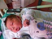 Patrik Gemsa se narodil 23. 12. 2018, vážil 4130 g a měřil 52 cm. V Choťovicích ho přivítá maminka Kateřina a tatínek Martin
