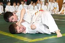 Z prvního kola 22. ročníku Polabské ligy žactva v judo, které se konalo 24. ledna 2009 ve Velimi.