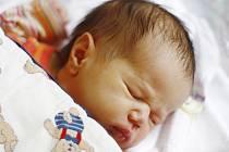 K devítileté Lucince a čtyřleté Zuzance přibyla do rodiny Vlaďky a Petra z Poděbrad třetí dcera. Michaela Hujerová se narodila 4. června 2012. Po porodu měřila 53 centimetry a vážila 3380 gramů.