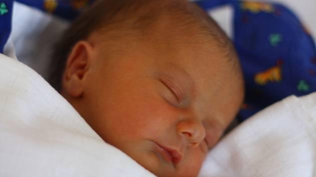Viktorie Pařízková se narodila 28. dubna 2012. Po porodu měřila 43 centimetry a vážila 2220 gramů. Maminka Světlana a tatínek Martin si ji odvezli do Kutné Hory, kde se na ni těšila osmiletá Deniska.