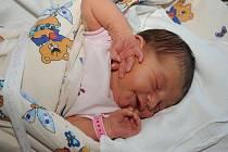 Rovných 4 000 gramů vážila a 53 centimetry měřila při svém narození 8. září Elizabeth Mommers, která přibyla k šestileté sestřičce Radce rodičům Radce a Rickovi do Velkého Oseka.