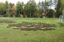 Hřiště v Jevanech zdevastovala divoká prasata
