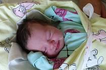 Nikola Boumová se narodila 14. července 2019, vážila 3055 g a měřila 48 cm. V Mochově bude vyrůstat s maminkou Lucií a tatínkem Jiřím.