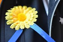Koupí žluté květiny mohou lidé podpořit boj proti rakovině.