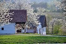 Domy z Masojed a Krchleb v proměnách ročních období