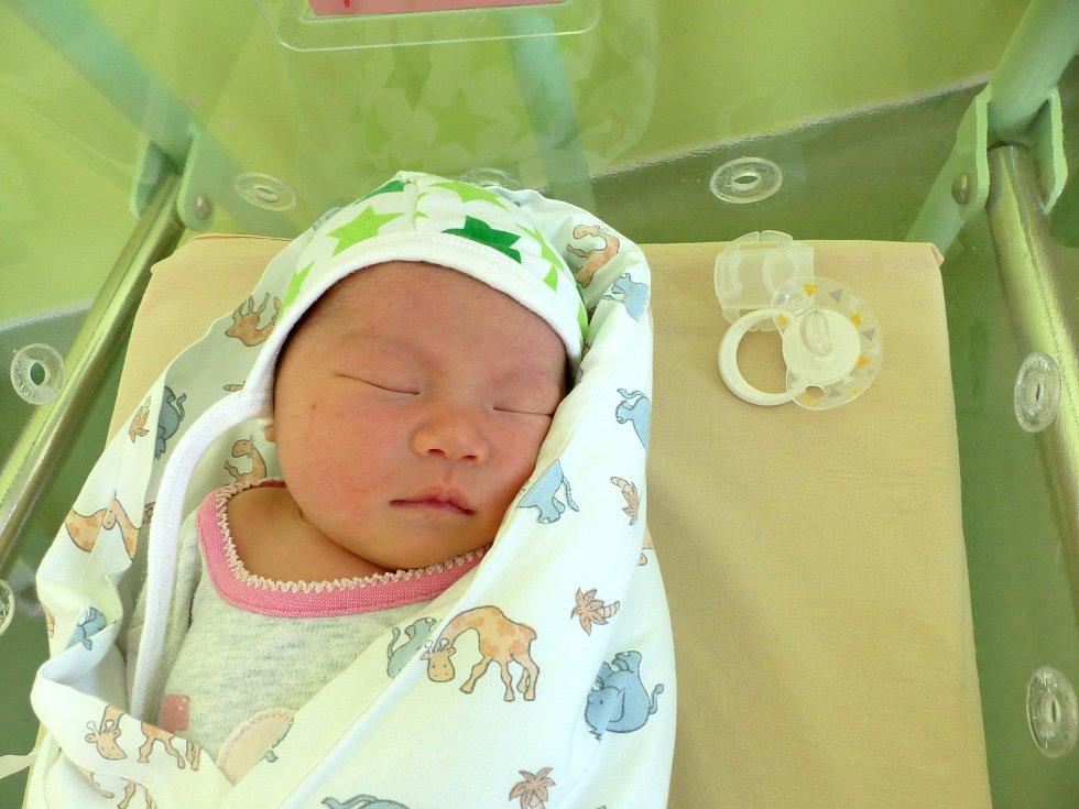 Gia Linh Dinh se narodila 6. února 2019 s mírami 3430 g a 48 cm. V Přelouči ji přivítá sestřička Gia Han (4) a rodiče Hoang a Le.