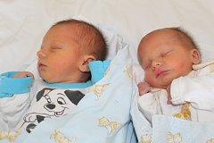 Dvojčata Lukáš a Tomáš Havlovi se narodila 30. prosince 2017. Lukášek měřil 50 centimetrů a vážil 2625 gramů, Tomášek měřil 45 centimetrů a vážil 2835 gramů. Domů do Šlotavy u Nymburka si chlapečky odvezli rodiče Daniela a Petr k sestřičkám Michaele (12 l