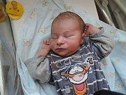Radka a David z Velkého Oseka se dočkali syna. David Werner se narodil 21. srpna 2017. Vážil 3405 gramů a měřil 51 centimetr.