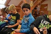 Radimská škola má zájem o rorýse a stala se rorýsí školou.