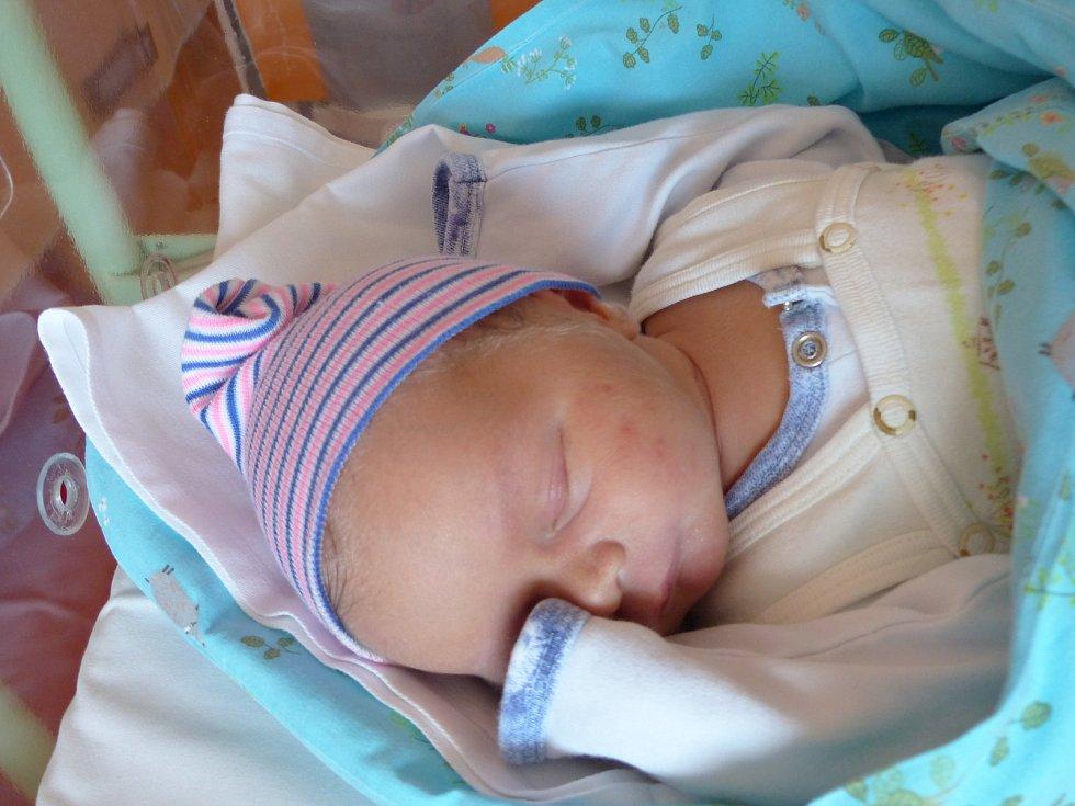 Václav Křídlo se narodil 15. října 2019 v kolínské porodnici, vážil 4140 g a měřil 52 cm. V Chlumci nad Cidlinou se z něj těší maminka Markéta a tatínek Radek.