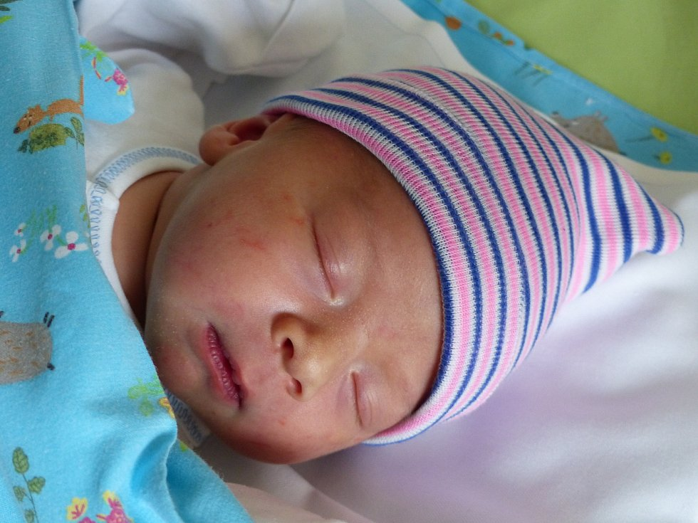 Jindřich Holoubek se narodil 7. dubna 2021 v kolínské porodnici, vážil 3645 g a měřil 51 cm. Do Kutné Hory odjel s maminkou Simonou a tatínkem Ondřejem.