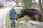 Přátelského koně v zahradě v sousedství kostela pohladil každý z kolemjdoucích. Vynadívat se nemohl také malý Vojta.