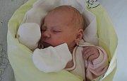 Barbora Skřivánková se narodila 10. listopadu 2016 mamince Kateřině a tatínkovi Ondřejovi zKutné Hory. Její první míry byly 50 centimetrů a 3170 gramů. Dětským světem ji provede takřka tříletá sestřička Natálka.