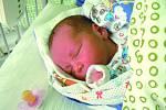 Dominik Mašek se narodil mamince Lucii a tátovi Tomášovi 15. března 2012 v 0.34 hodin. Vážil přesně tři kilogramy a měřil půl metru. Doma v Poříčanech se na nového brášku těšil Michal a Patrik.