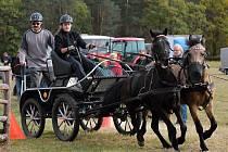 Závod koňských spřežení v Krakovanech