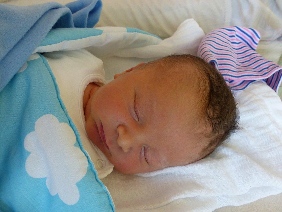 Daniel Čerevik se narodil 30. září 2019 v kolínské porodnici, vážil 4050 g a měřil 52 cm. V Kolíně ho přivítala sestřička Katarína (4) a rodiče Katarína a Daniel.