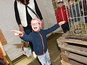 Ve Městském společenském domě začala výstava o životním prostředí.