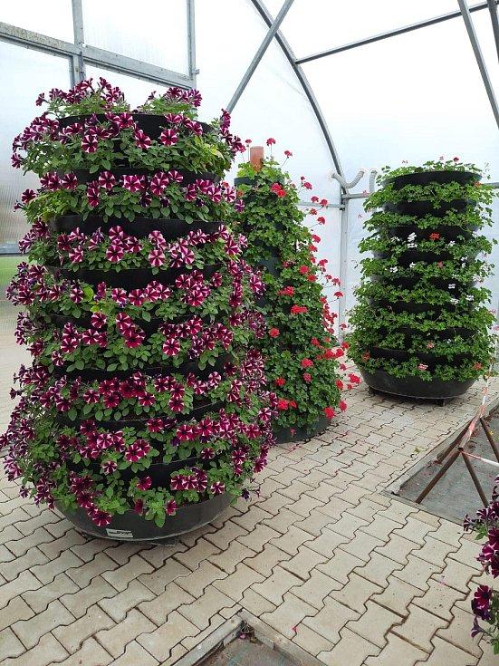 Květinová výzdoba pro Kolín je takřka připravená
