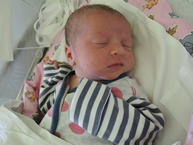 Ema Burgetová se rozkřičela 14. prosince 2016. Její poporodní míry činily 49 centimetrů a 3005 gramů. Smaminkou Evou, tatínkem Romanem a sestřičkou Aničkou (14 měs.) bude vyrůstat vDobřichově.