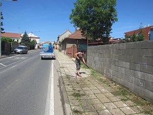 Likvidace plevelu horkou vodou v Českém Brodě.