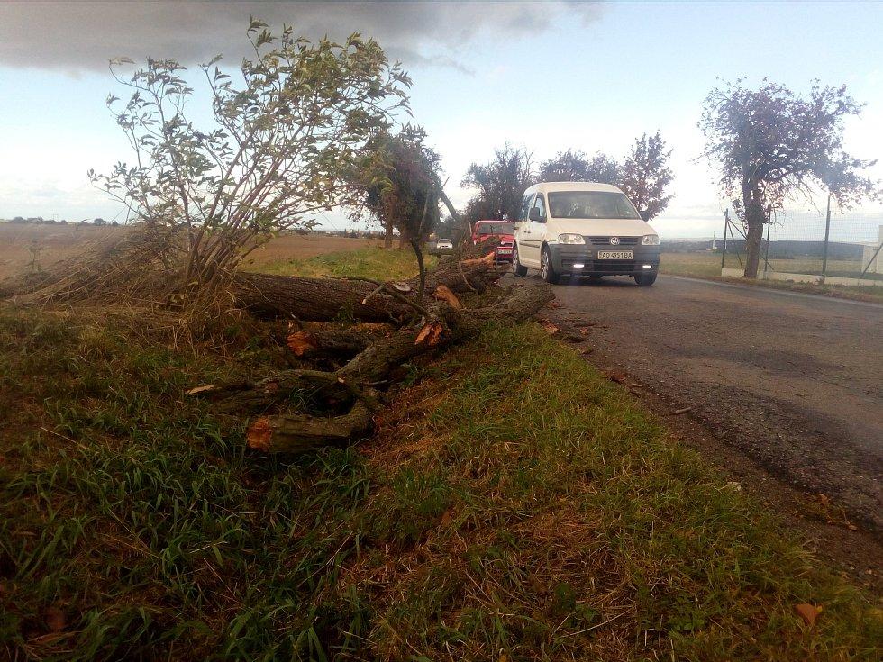 Silný vítr lámal větve i stromy, komplikace tak působil zejména v dopravě.